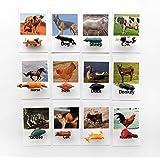 Montessori Animal Matching Cards,Figurines Poultry Animal with Matching Cards,Educational Toys for Toddlers,Montessori…