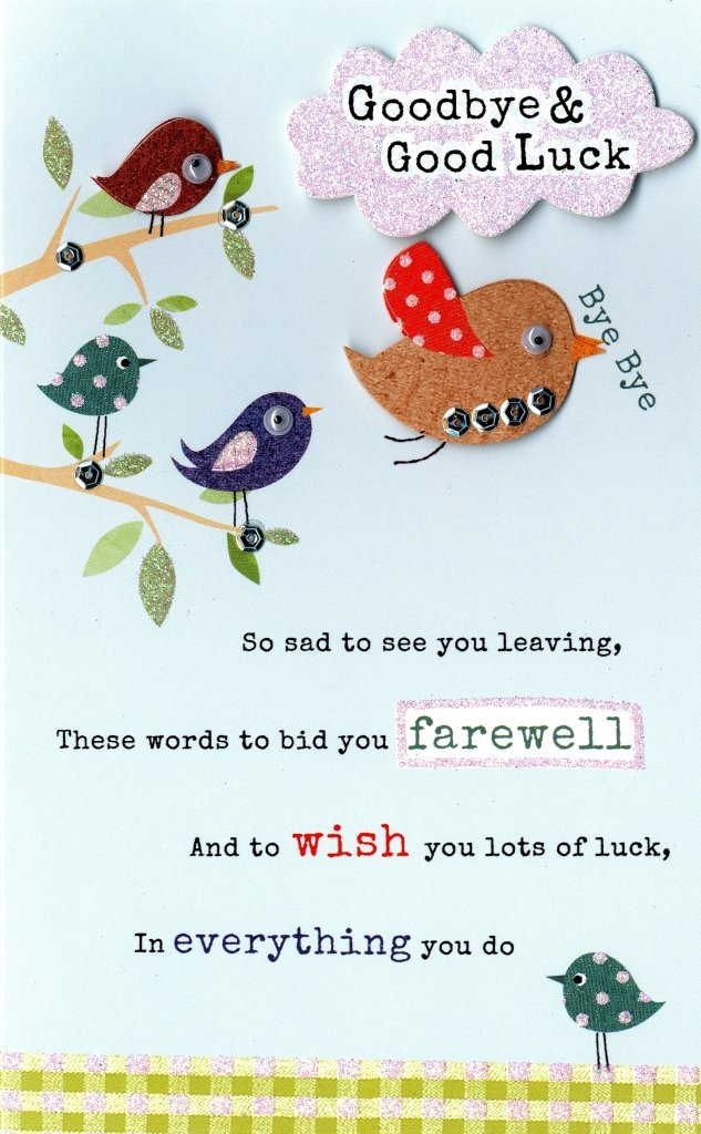 Goodbye good luck embellished greeting card second nature poem goodbye good luck embellished greeting card second nature poem corner cards amazon office products m4hsunfo