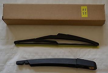 Limpiaparabrisas Trasero y el brazo para Citroen C2 2003: Amazon.es: Coche y moto