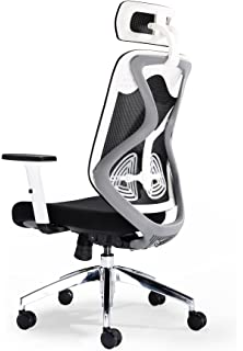 Ordinaire Office Hippo 2020 High Back Executive Chair With Adjustable Headrest, Seat  Slide, Adjustable Lumbar