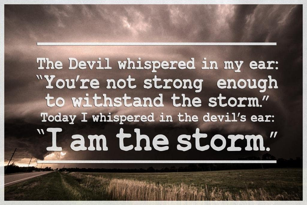 I Am The Storm Quote Motivational Cool Wall Decor Art Print Poster 36x24