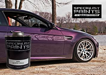 BMW Techno Violet   Pint Kit Paint Code 299