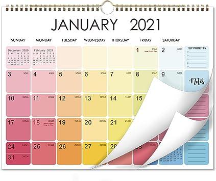 Amazon.com: Calendario 2021 – Calendario mensual de pared 2021 con