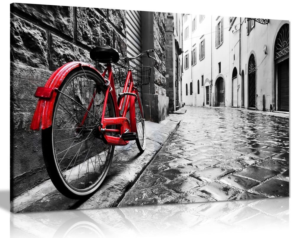Retro Vintage Red Bike On Cobblestone Street Black & White Canvas Wall Art Picture Print (36X24) Panther Print
