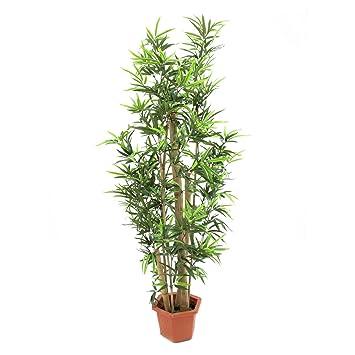 Amazon De Artplants Deko Bambus Mit 1290 Blattern Dicke Natur