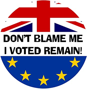 I Voted Remain Stay In EU Car Bumper Vinyl Decal Brexit Sticker 80mm x 80mm
