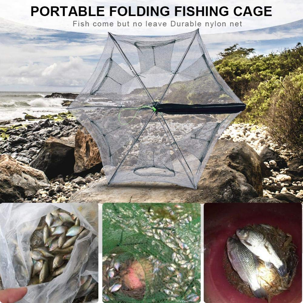 Krabben Hummer Asixx Faltbare K/öderfischreuse Garnelen 6//8 L/öcher Krabbenfischen usw Aal Fischernetz aus Nylon f/ür Stint Elritzen