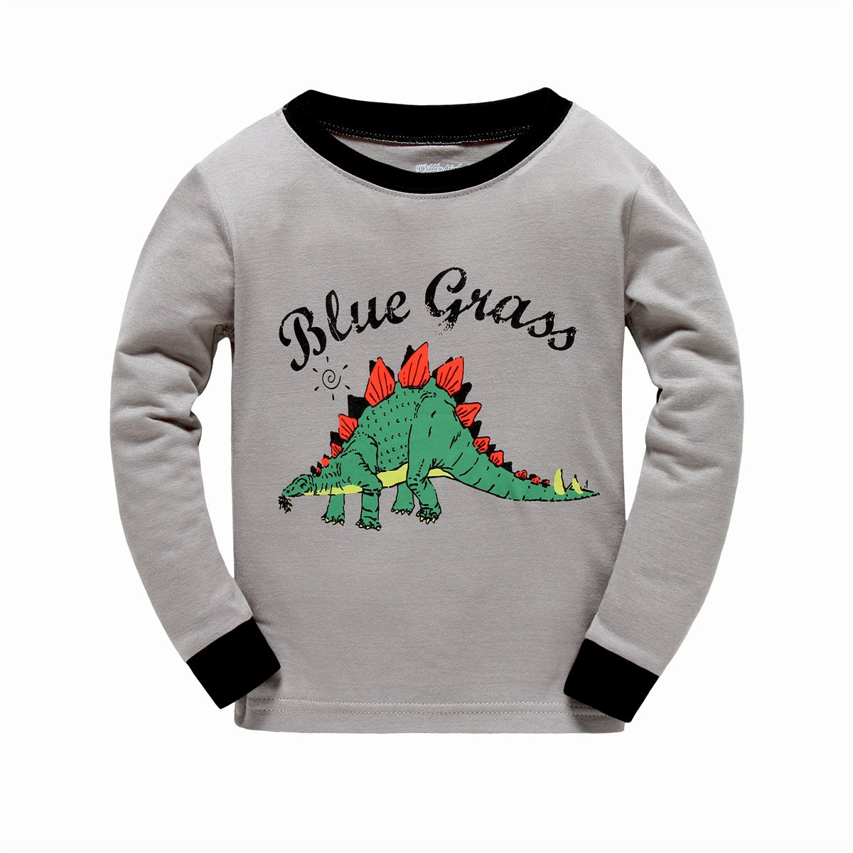 BABSUE Toddler Boys Dinosaur T-Shirt Long Sleeve Sweatshirts Cotton Pullover Crewneck Cartoon Tops Tees Kids 1-8T