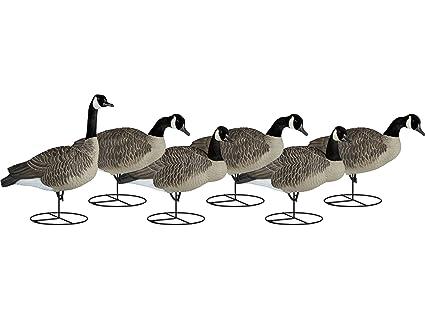 Amazon com : Dakota Decoy Signature Series Flocked Goose