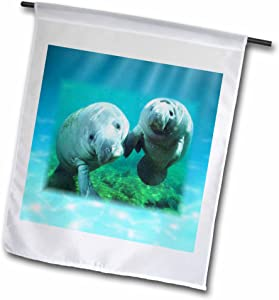 3dRose fl_39647_1 Garden Flag, 12 by 18-Inch, 2 Manatees Looking at You