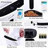 Petwant Automatic Pet Feeder For Dogs