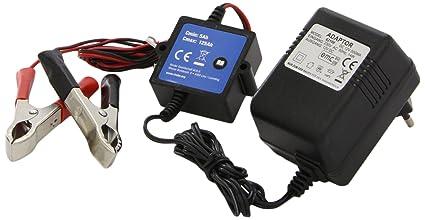 Alpin 62100 - Cargador de baterías para coche y moto