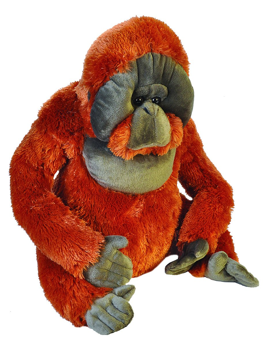 Amazon.com: Wild Republic Orangutan Plush, Stuffed Animal, Plush Toy, Gifts for Kids, Little biggies 30 Inches: Toys & Games