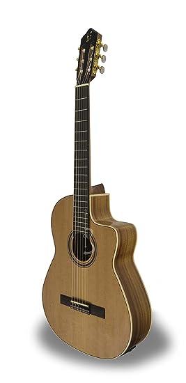 apc 1n guitare classique