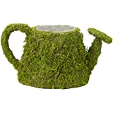 "Lillian Rose Watering Can, 9.5 x 5"", Moss"