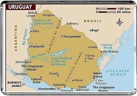 CFL M221 MAP OF URUGUAY CALAMITA DA FRIGO URUGUAY TRAVEL FRIDGE MAGNET: Amazon.es: Hogar
