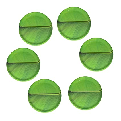 SP RELIANCE 12 inch MELAMINE SMART BANANA LEAF ROUND DINNER PLATE SET OF 6  sc 1 st  Amazon.in & Buy SP RELIANCE 12 inch MELAMINE SMART BANANA LEAF ROUND DINNER ...