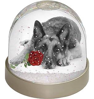 9.2 x 9.2 x 8 cm Advanta Group Papillon Dog Snow Dome Globe Waterball Gift Multi-Colour