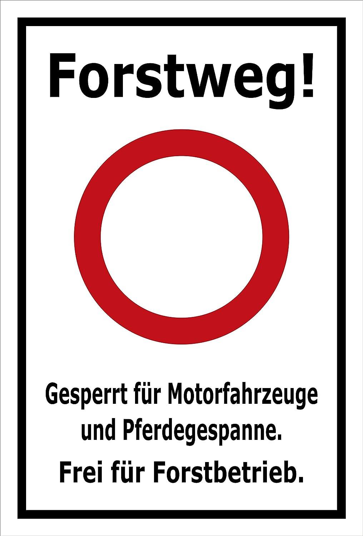 Melis Folienwerkstatt S00359-028-A Autocollant pour Tableau de Bord Forstweg 20 modèles Disponibles