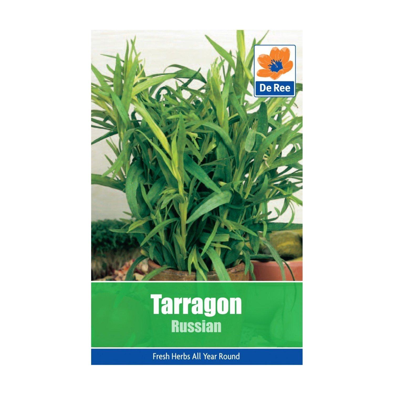 Tarragon Seeds