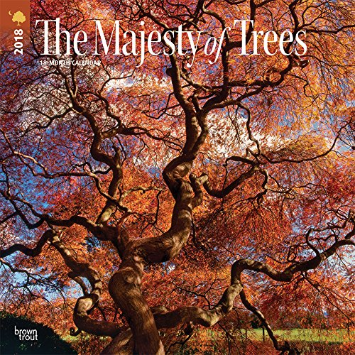 The Majesty of Trees 2018 12 x 12 Inch Monthly Square Wall Calendar, Nature Trees Outdoors Spiritual (Multilingual Edition)