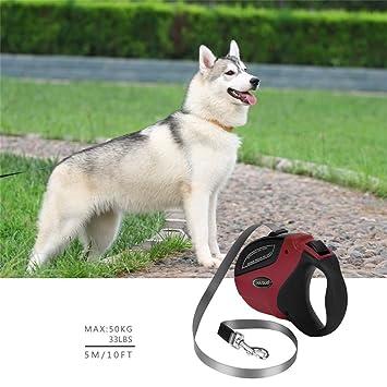 SKYSC - Correa de perro retráctil para perros y gatos, 5 m: Amazon.es: Hogar