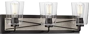 "Progress Lighting P300231-143 Briarwood Three-Light Bath & Vanity with Clear Glass, 8-1/4"" x 24-3/4"", Graphite"