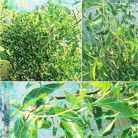GFYWZ Plantas De Jardín Y Redes para Estanques, Reutilizables para Jardines, Redes contra Pájaros, Protegen Plantas Y Árboles Frutales,2x10m: Amazon.es: Hogar