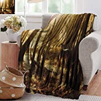 PearlRolan Cool Blanket,Cabin Decor,Young Deer at Sunset in The Forest National Park Outdoors Netherlands Photo,Yellow Brown,for Bed & Couch Sofa Easy Care
