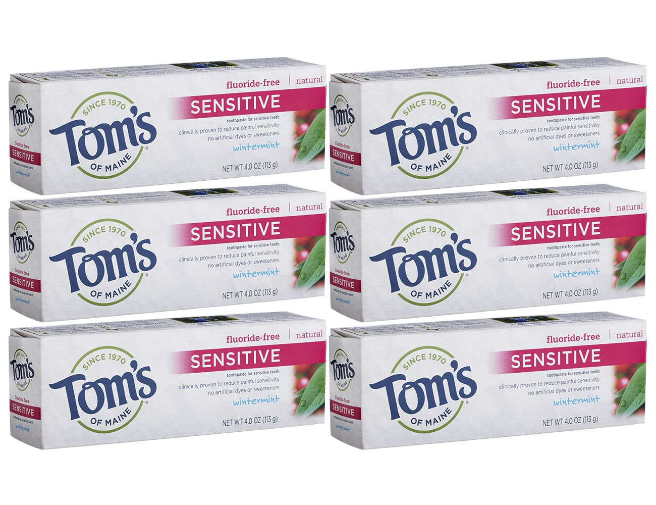 Tom's of Maine Fluoride Free Natural Sensitive Toothpaste, Wintermint, 4 Ounce, Pack of 6