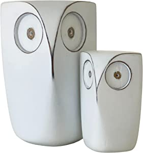 Huey House Wise Owls Decor - Buho Statue Sculptures, Boxed Set of 2, (White 5¾ & 4 inch) Decorative Figurines for Bookshelf Decor Accents, Small Home Decoration Items for Living Room, Bedroom, Office