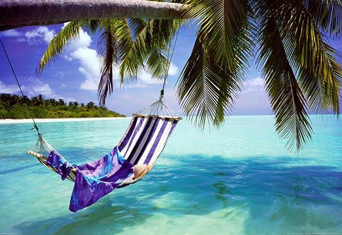 amazon com tropical beach poster print 36x24 poster print 36x24