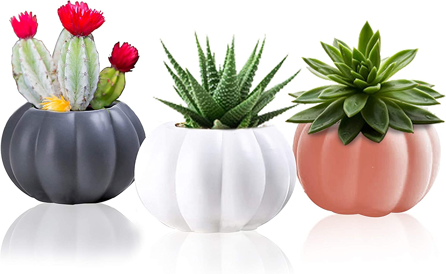 Ceramic Miniature Pumpkin Succulent Pots,Cute Halloween Decorations,Mini Pumpkin Cactus Planters,Small Round Set of 3 Indoor/Outdoor Flower Pot,Planter/Containers with Drainage Hole 2.5x3.3x1.6 Inch