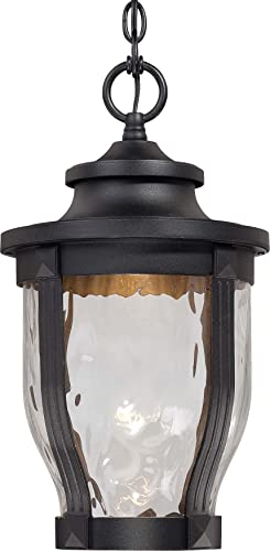 Minka Lavery Outdoor Pendant Lighting 8764-66-L Merrimack Cast Aluminum LED Ceiling Lighting for Patio, Black