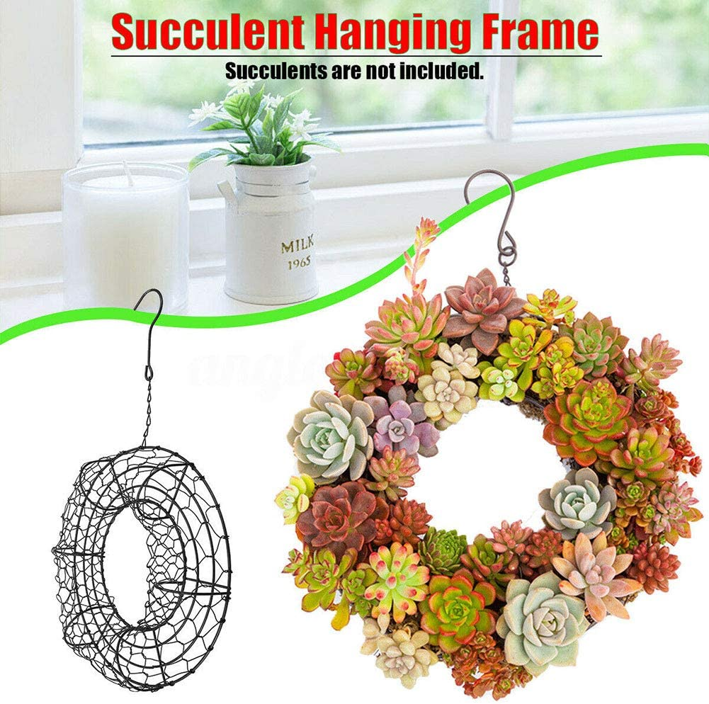 tesyyke Rustic Iron Wire Wreath Wire Wreath Frame Succulent Pot Hanging Wall Air Plant Holder Garden Metal