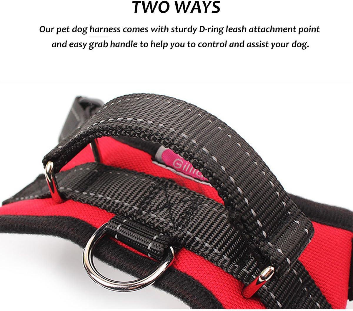 Hundegeschirr einfache Kontrolle f/ür kleine mittelgro/ße und gro/ße Hunde kein Ziehen und kein W/ürgen verstellbare Outdoor-Weste f/ür Hunde