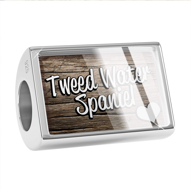 Dog Breed United Kingdom 925 Sterling Silver Bead NEONBLOND Custom Charm Tweed Water Spaniel