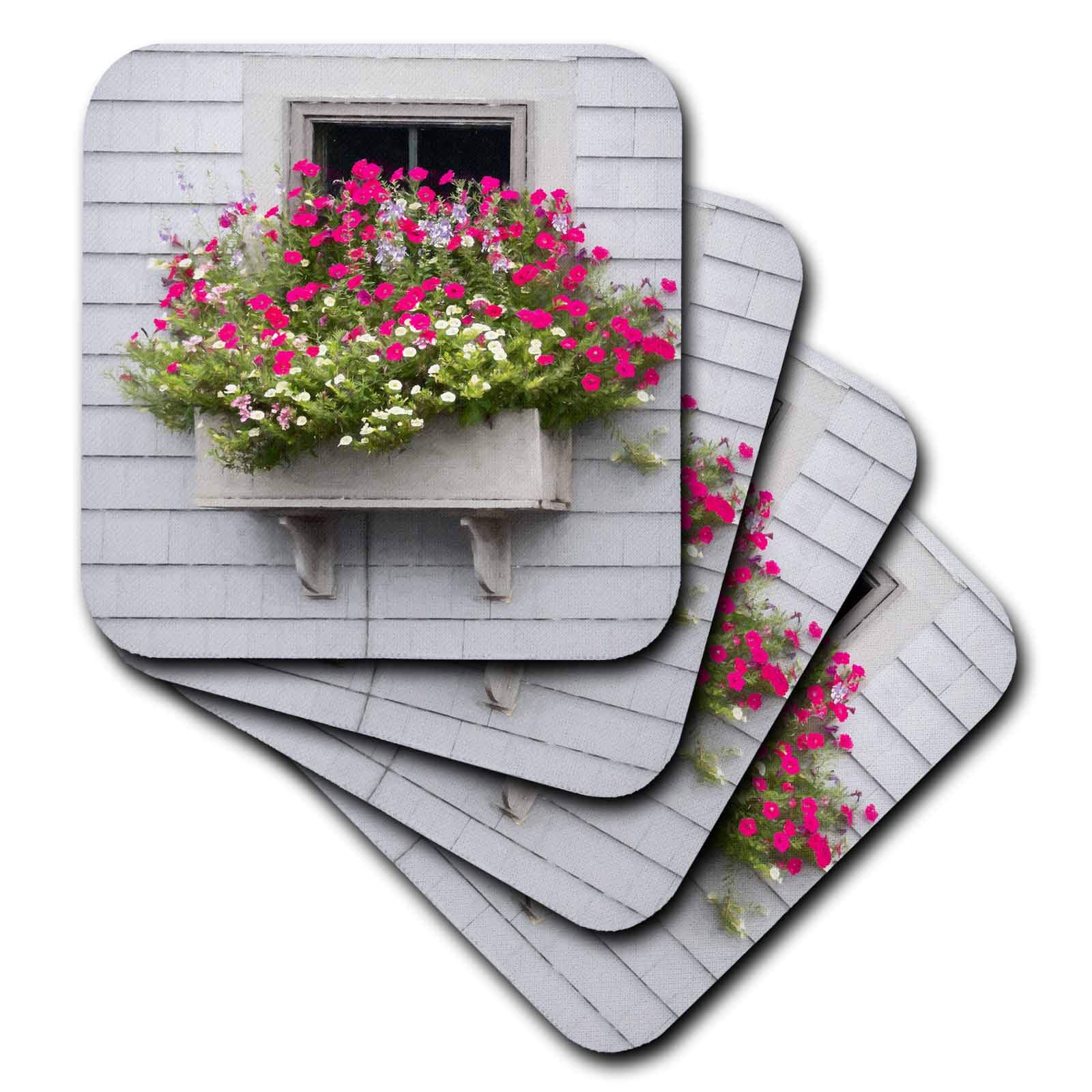 3dRose Roni Chastain Photography - Pink fowers by the window - set of 4 Coasters - Soft (cst_295334_1)