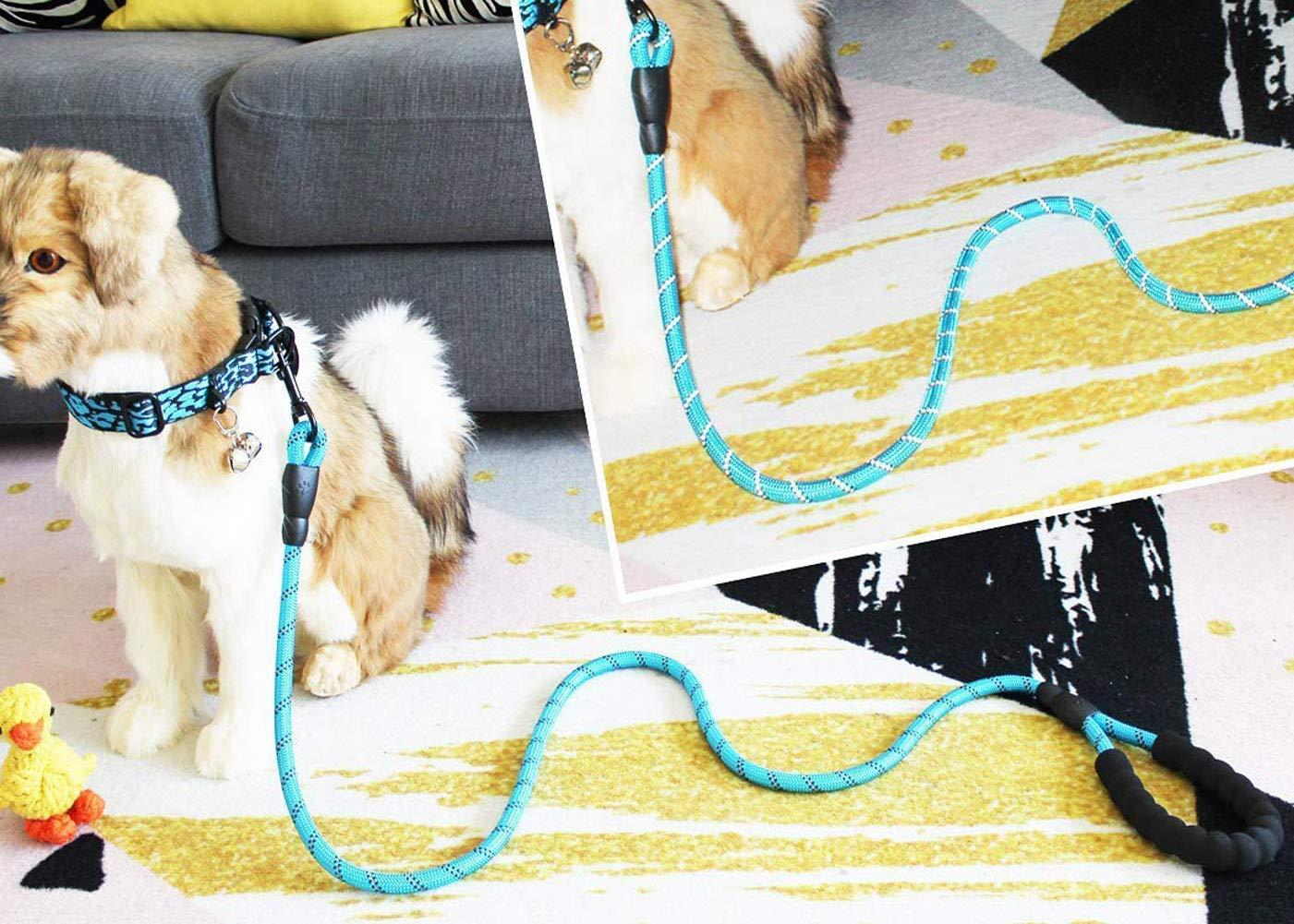 Negro 5 FT Correas Para Perros Resistentes Mango Acolchado C/ómodo E Hilos Altamente Reflectantes Correas Para Perros Para Perros Medianos Y Grandes Adiestramiento De Perros Correas Para Caminar