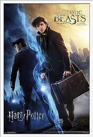 Trends International Fantastic Beasts – Wizarding World Wall Poster, 24.25 X 35.75 , Multi