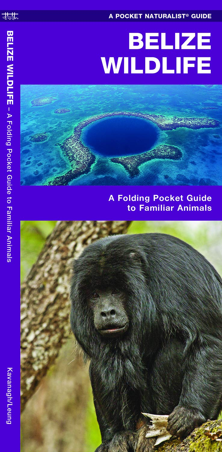 Belize Wildlife: An Introduction to Familiar Species (A Pocket Naturalist Guide) ebook