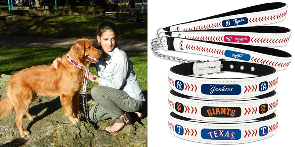 MLB Washington Nationals Classic Leather Baseball Dog Collar (Toy)