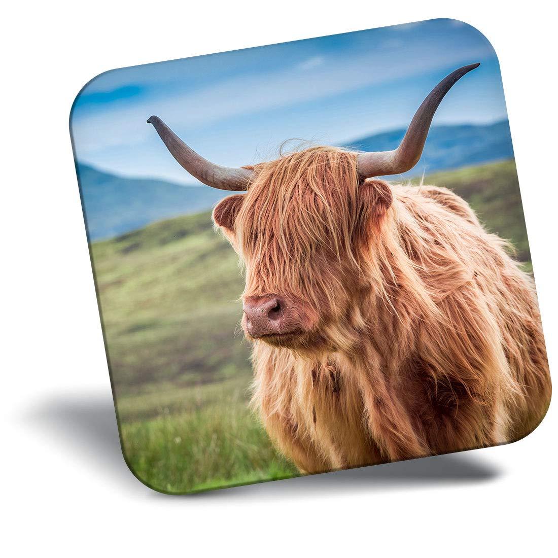 Destination Vinyl ltd Awesome Fridge Magnet - Hairy Highland Cow Scotland Horns 15762