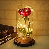 Warmmie bella e la Bestia Preserved Fresh rose fiore luce in una base in vetro romantico di San Valentino, compleanno anniversario