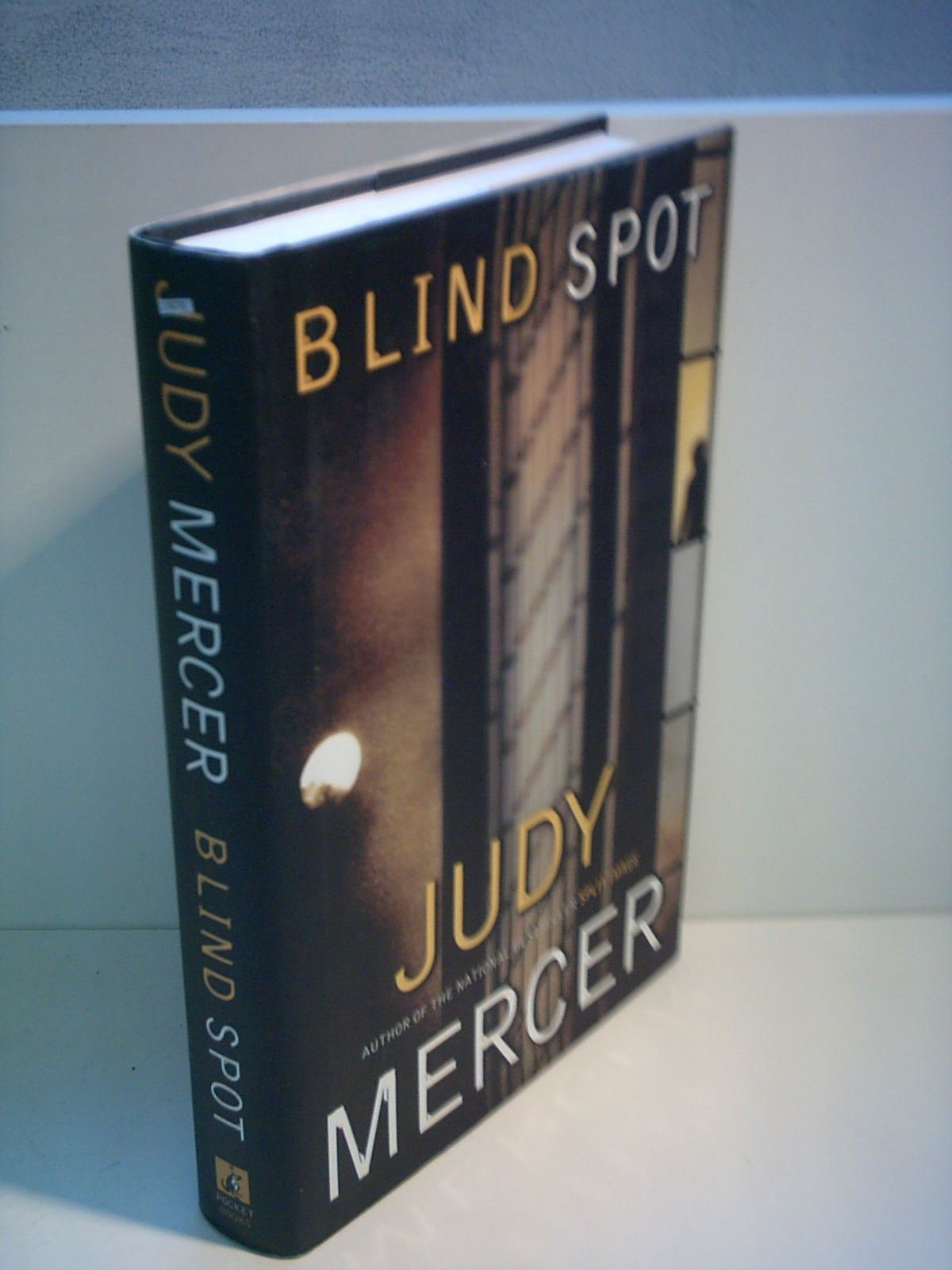 Read Online Blind Spot pdf epub