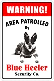 "Warning Area Patrolled By Blue Heeler 8""X12"" Novelty Dog Sign"