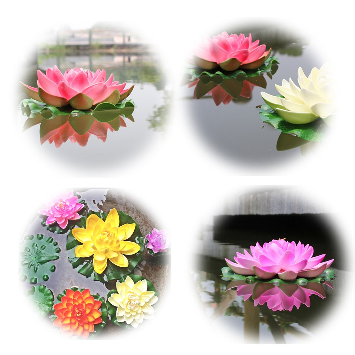 Amazon Peach Floating Water Lotus Pond Decor Water Lily