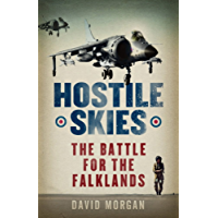 Hostile Skies (English Edition)