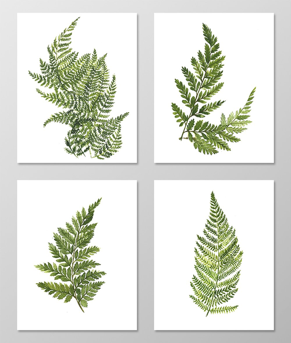 Fern art #A074 - Set of 4 art prints (8x10). Fern wall art.Fern picture.Botanical art.Botanical prints wall art. Nature art botanical.Painting.Nature art.Nature wall art.Green wall art.Green decor.