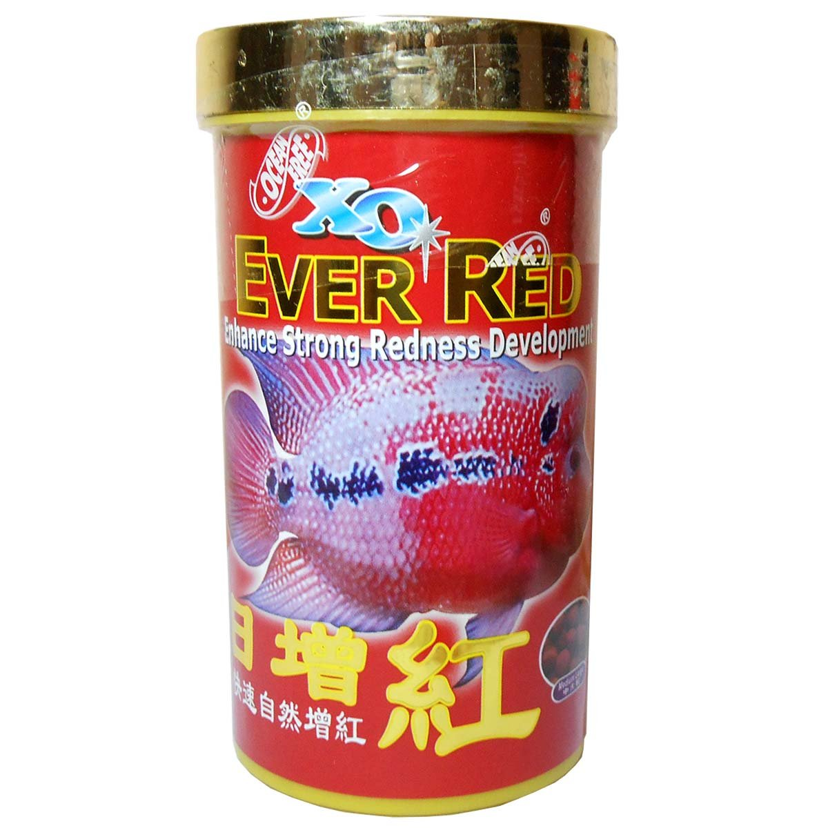 Buy Xo Ever Red Fish Food 100G Online at Low Prices in India - Amazon.in